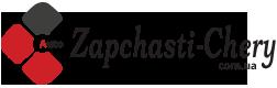 Шайба Джили FC купить в интернет магазине 《ZAPCHSTI-CHERY》
